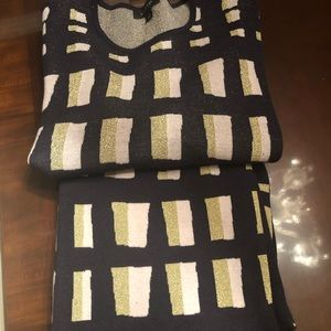 Adorable Ann Taylor Knit Skirt & Sweater Set